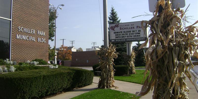 Moving Companies in Schiller Park, IL